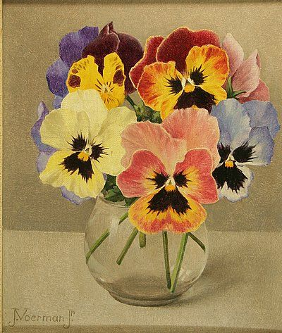 Violets in a vase by Jan Voerman sr. (Holland) Dutch painter of still life