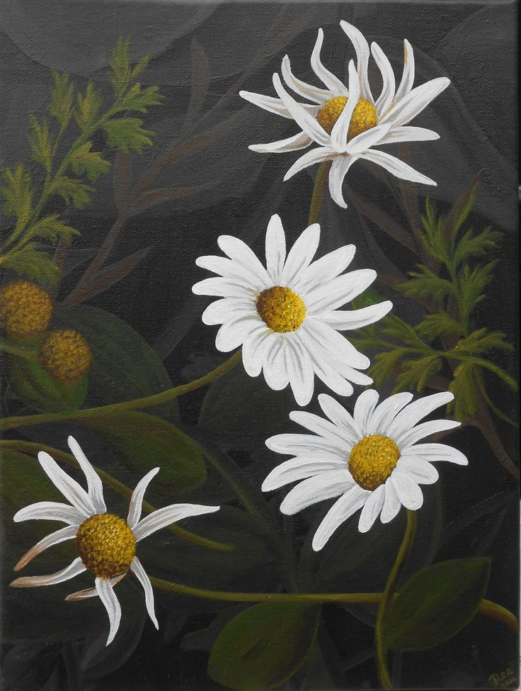 Daisy Painting - White Flower artwork - White Daisies Painting - original acrylic painting on canvas by artist Dee Summers by deejavuart on Etsy https://www.etsy.com/uk/listing/193740643/daisy-painting-white-flower-artwork
