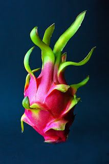 The Nicest Pictures: Dragon Fruit
