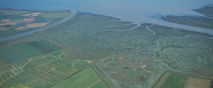RSPB Frampton Marsh Reserve, Lincolnshire