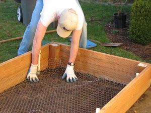 "Wish I would have seen this before we built our garden....Line your raised bed with chicken wire to keep out gophers and moles!  I also did this with small 12"" square sections of fencing material to keep out the armadillos that were digging up my tomatoes."