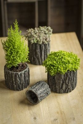 Round Shaped Concrete Pots with Bark-Like Detailing by Vagabond Vintage