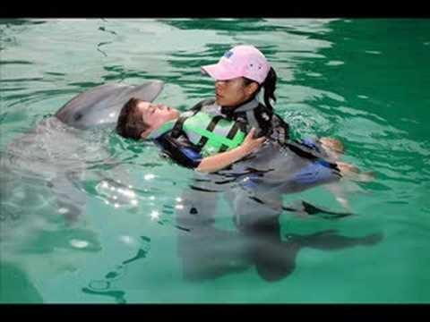 Terapia Asistida con Delfines, para trastornos neurológicos o daño cerebral