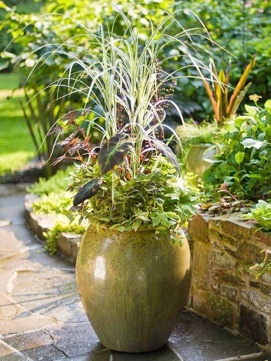 91 best l 39 art des jardini res et pots images on pinterest - Pots et jardinieres ...