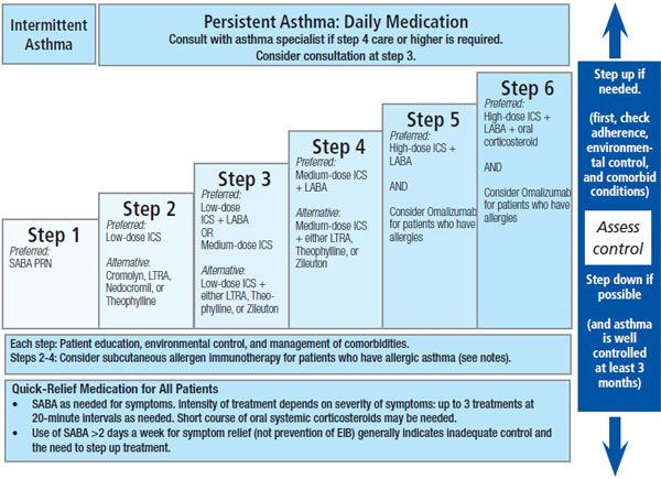 Figure 3. Stepwise approach for managing asthma in youths ...