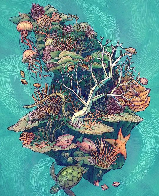 Original Illustrations by Kate OHara