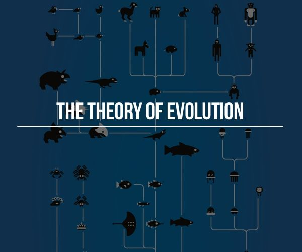 social theory excercise Looking for a new book to update your social theory course or one to simply  jumpstart your first time teaching it former contexts graduate.