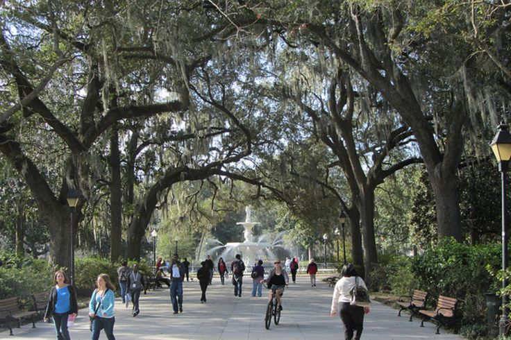 Find the best Savannah attractions and activities in Savannah, GA. Read the 10Best Savannah reviews and view user's attractions and activities ratings.