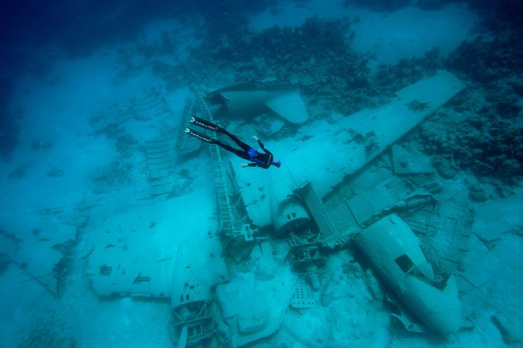 Great wreck dive
