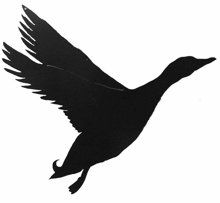Flying duck | Silhouettes | Pinterest | T shirt art ...