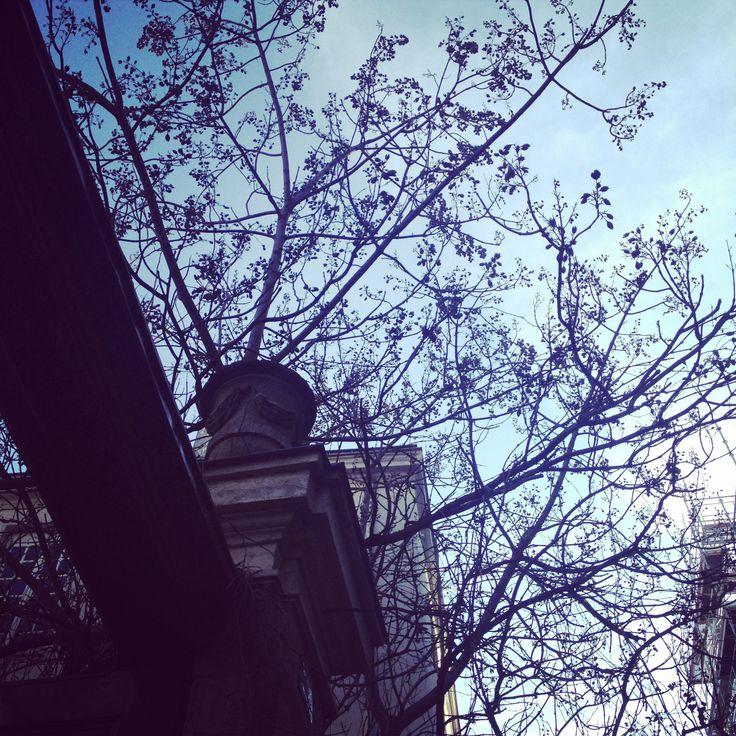 Paris - 6 mars 2014