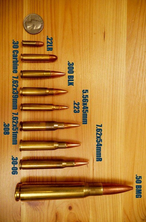 Common Rifle Bullet Calibers Cartridge Guide Sniper