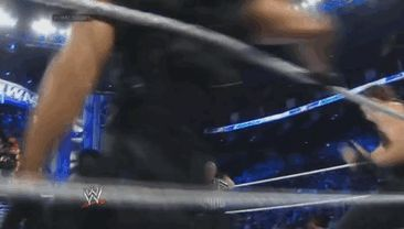 Dean Ambrose and Seth Rollins going through the ropes. Like fricken bosses!!! [Gif]