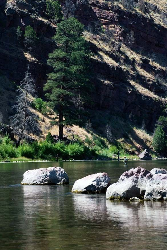 100 best images about fly fishing yank on pinterest for Green river fishing