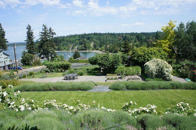 Lavender Hill Farm, Vashon Island, Washington, USA.