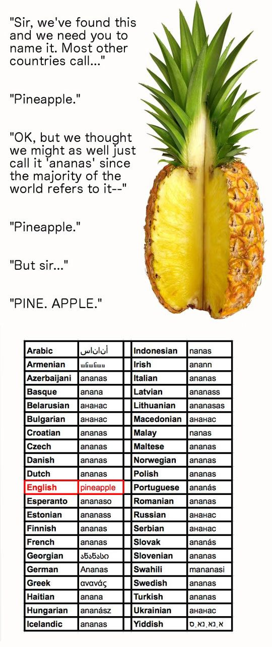 "When European explorers discovered this tropical fruit in the Americas, they called them ""pineapples"" due to resemblance to what is now known as the pine cone. ""Ananas"", the original name of the fruit, comes from the Tupi word nanas, meaning ""excellent fruit"", as recorded by André Thevet in 1555. In Spanish, pineapples are called piña (""pine cone""), or ananá (ananás) (example, the piña colada drink). (Wikipedia)"