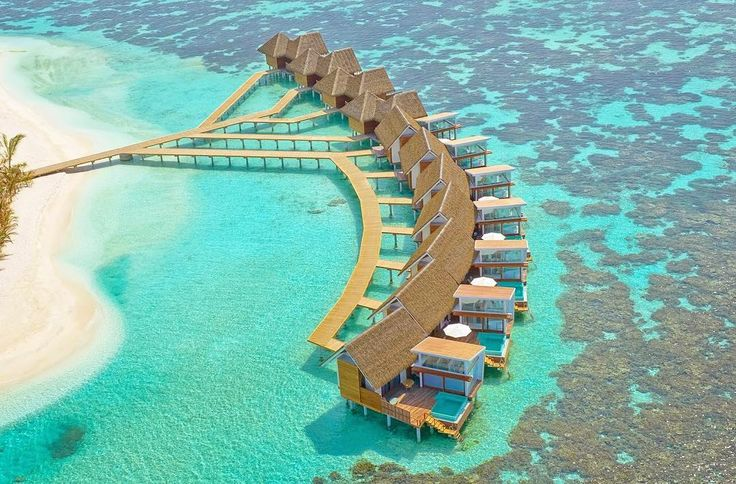Maldives Luxury Resorts- #Kandholhu Island Resort #bmrtg #Maldives #bestvacations #WorldTravelGuide #LalumiTravels #warrenjc #livetravelchannel #sunnysideoflife #maldivity #travel #traveling #vacation #dive #surfing #adventureculture #instagood #holiday #lagoon #beach #instapassport #instatraveling #mytravelgram #travelgram #igtravel #CrystalClearWater #LonelyPlant #adventureculturenature #indianocean #retweet