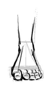How to Draw Feet Front View   The sole. Not particularly interesting, other than being a good map of ...
