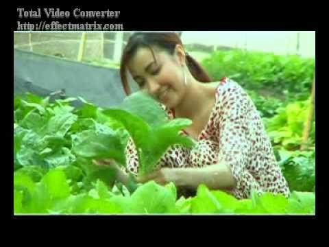 Cô gái miền tây - Lý Hào Nam