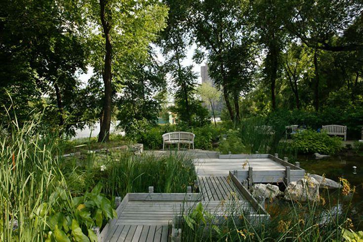 Billie Cohen, Swindler Cove Park