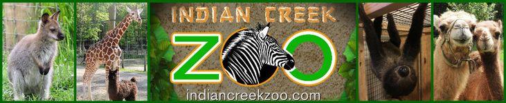 Indian Creek Zoo - South Michigan
