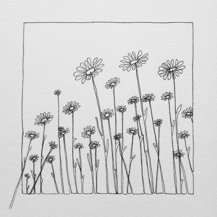 Continuous line doodle: Daisies. www.theconstantdo...