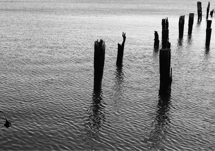 Pillars In Water from Artifax #blackandwhite #beautifulphotography #forsale #new