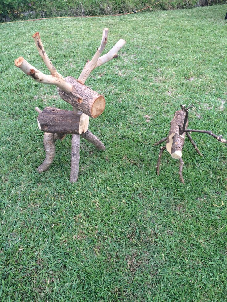Reindeer on the lawn