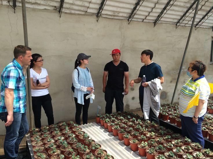 Zhue Yue Gardencentre - China