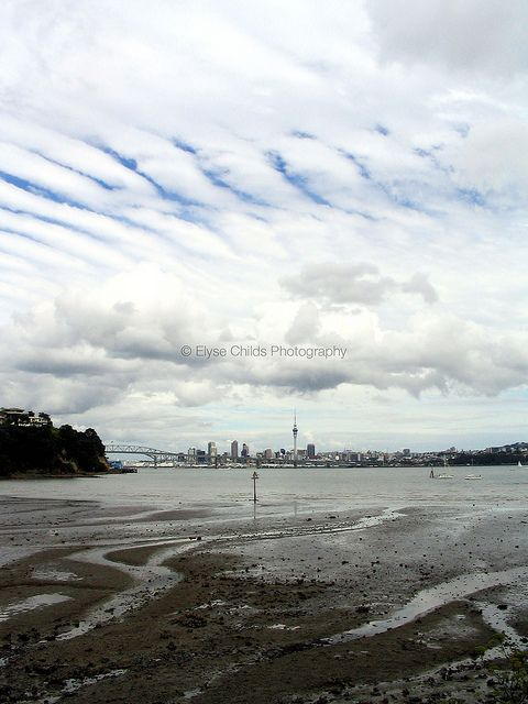 View of Auckland City   © Elyse Childs Photography