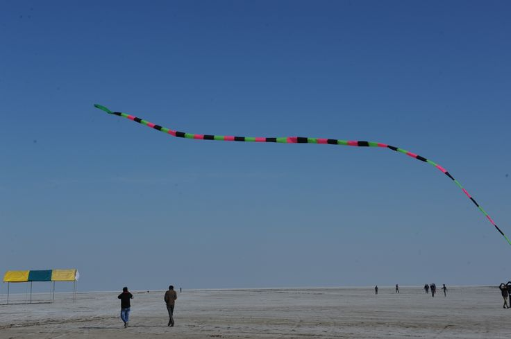 Kutch White Runn - Kite Festival 2014 http://www.ahmedabadkiteflyers.org - Royal Kite Flyers Club - Cobra Kite Flying by Paavan Solanki