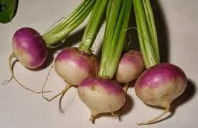 Turnip vegetable is a root vegetable that belongs to cruciferous family and good source of vitaminC. Turnips come in red-fleshed, orange, yellow etc
