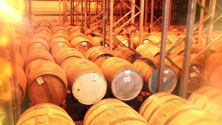 Visiting Whiskybroker in Creetown, Scotland