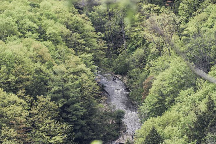 hiking-dundas-peak-ontario-8