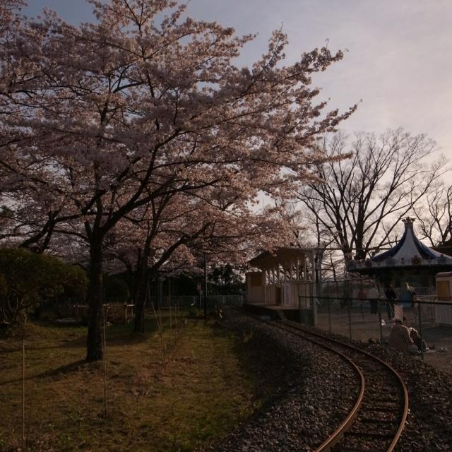 Park (Iwaki, Fukushima, JAPAN/2012.04)