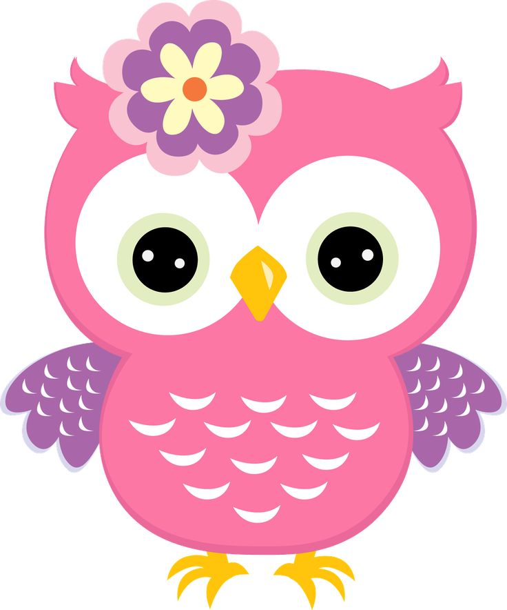 Pink owl with flower