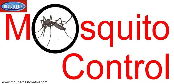 Call @ 99997875871. Stop the entrance of dengue like diseases into your home & offices. Get mosquito control of Mourier pest control