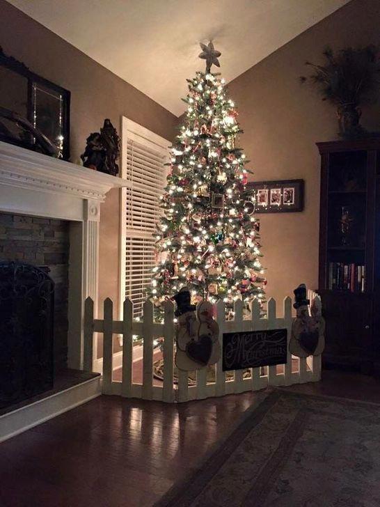 Christmas Tree Near Me.Live Christmas Trees Near Me For Sale Home Depot Christmas