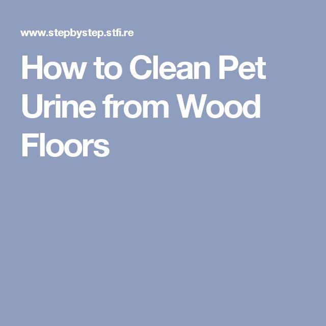 best 20+ cleaning pet urine ideas on pinterest | pet urine cleaner