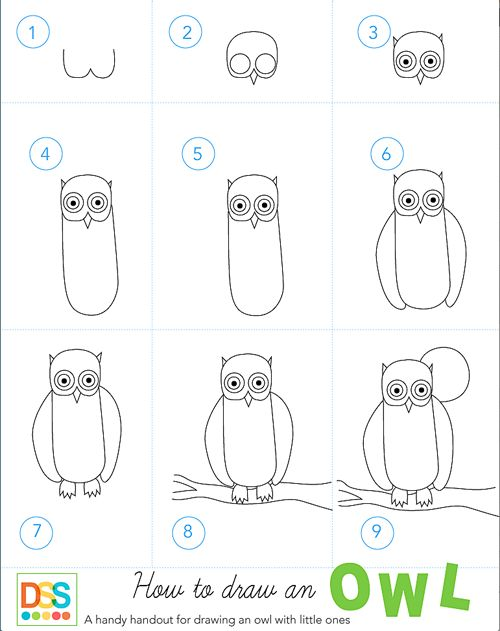 1000 ideas about draw an owl on pinterest how to draw for Steps to draw an owl