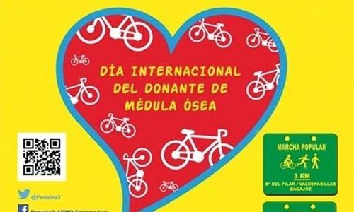 """No Dia Internacional do Dador de Medula Óssea Badajoz e Elvas """"pedalam"""" contra a Leucemia"""