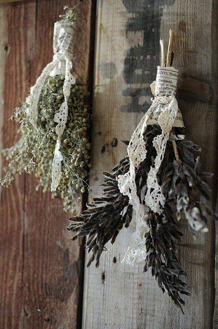 ed erbe, sono bellissime anche loro (via Franciskas Vakre Verden)