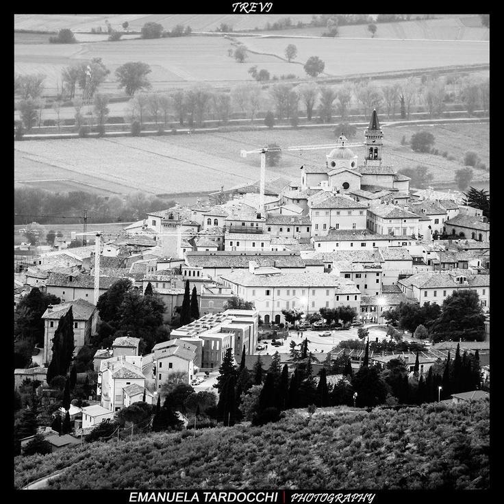 Trevi vista dall'alto.  www.oliotrevi.it