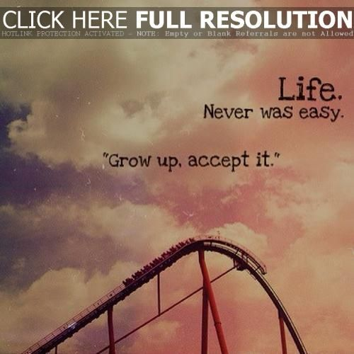My Life Is Like A Rollercoaster It Goes Up And Down And Back Up And