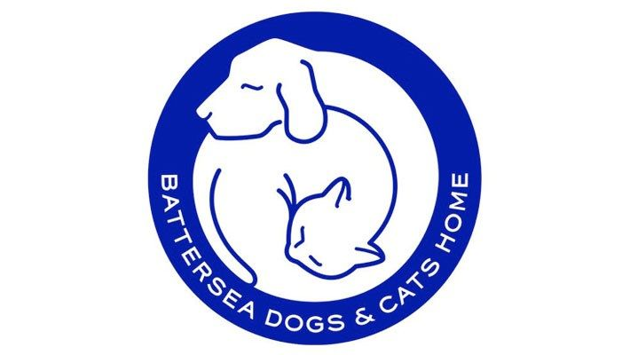 Battersea Dogs Cats Home In London Battersea Dogs Dog Cat Cat House