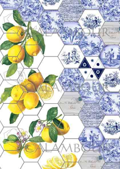 TCR 25 - TCE 25  Beautiful Blue Italian TILES  with lemons