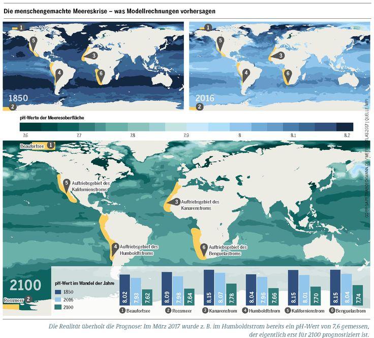 Die menschengemachte Meereskrise – was Modellrechnungen vorhersagen.