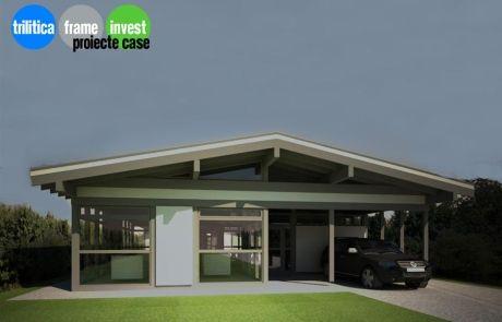 Proiect Casă Parter Mid Century Modern 1