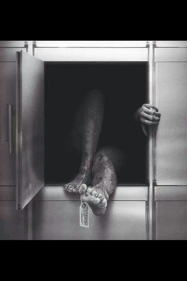 escaping the freezer