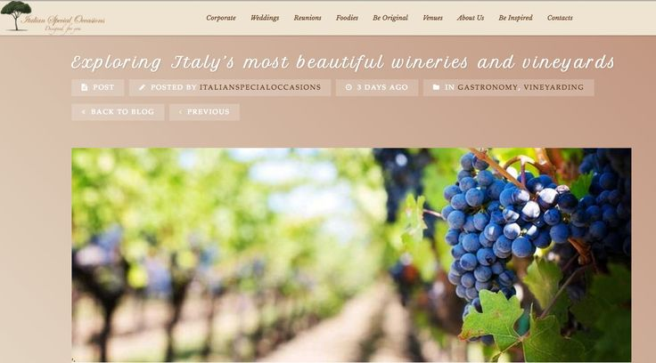 #CantinaTramin among the Italy's most beautiful #wineries and #vineyards
